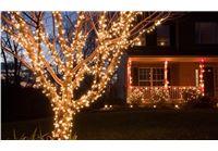 הדיל היומי- מקשטים את הגינה, הבית והמרפסת בצבעים חדשים וחוסכים בחשמל! שרשרת 50 או 100 נורות LED סולארית במחיר שיאיר לכם את הלילה!