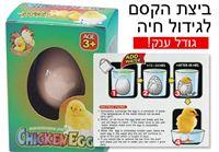 ביצת הקסם גודל ענק