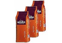Mauro De Luxe 3 kg פולי קפה