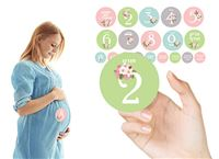 סט מדבקות לצילום ותיעוד שלבי הריון
